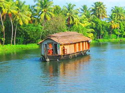 South India Beach and Backwater Tour