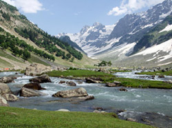Kashmir Tour with Sonmarg