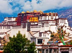 Ladakh Monasteries Tour